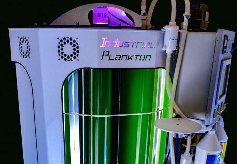 Bioreactor for Shrimp Feed