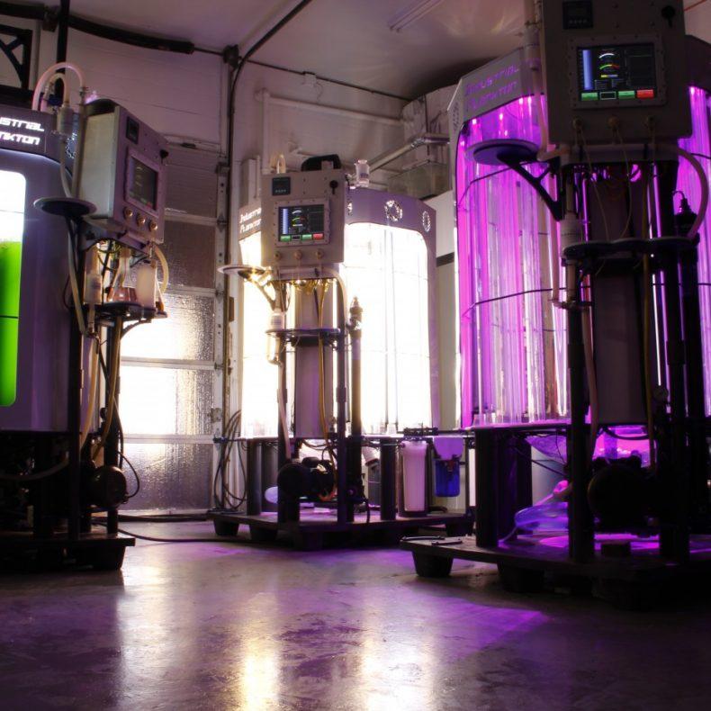 algae bioreactor for sale